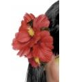 Rode hawaii haarbloem